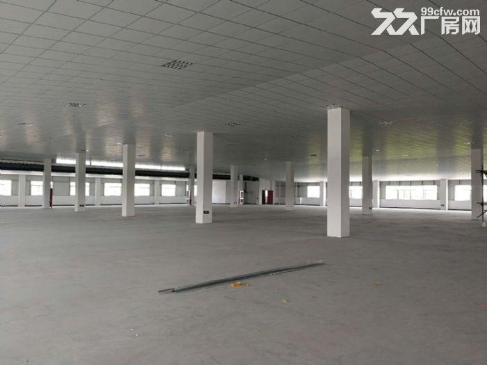 萧山区钱江农场附近可做仓库淘宝看过来无税收要求600方起分割-图(2)