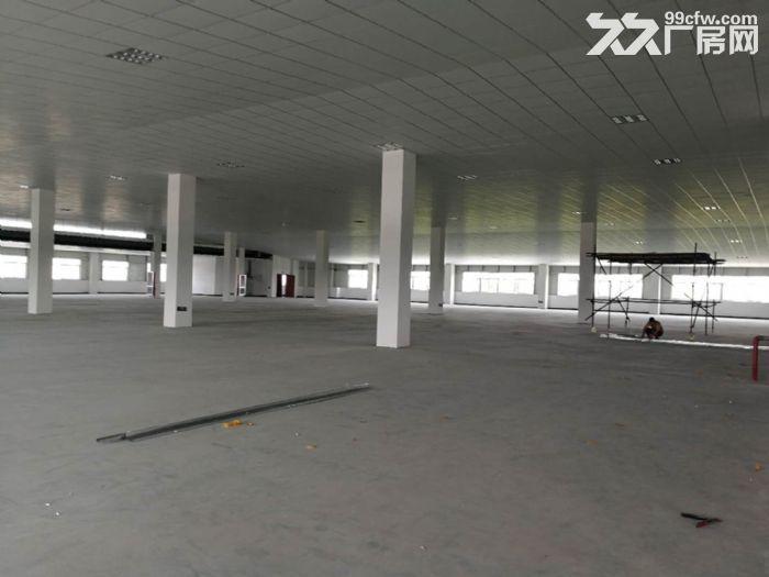 萧山区钱江农场附近可做仓库淘宝看过来无税收要求600方起分割-图(3)