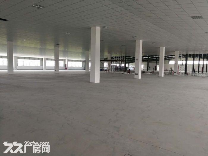 萧山区钱江农场附近可做仓库淘宝看过来无税收要求600方起分割-图(5)