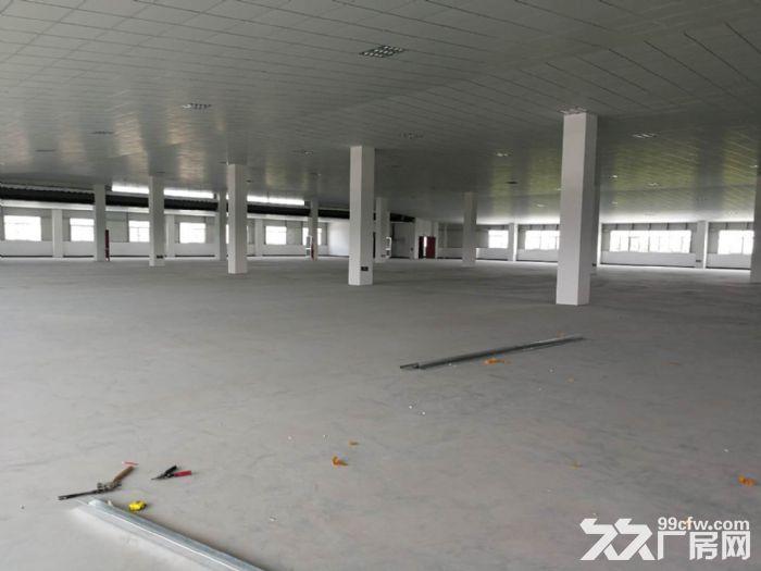 萧山区钱江农场附近可做仓库淘宝看过来无税收要求600方起分割-图(4)