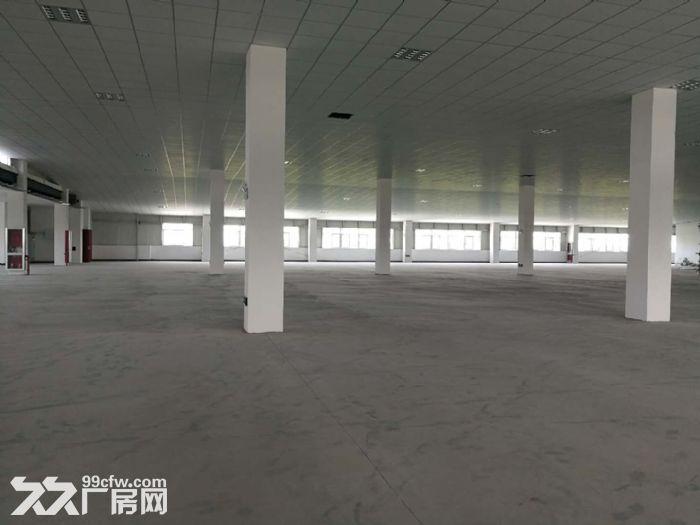 萧山区钱江农场附近可做仓库淘宝看过来无税收要求600方起分割-图(6)