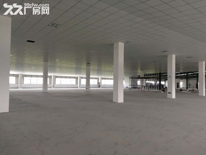 萧山区钱江农场附近可做仓库淘宝看过来无税收要求600方起分割-图(7)