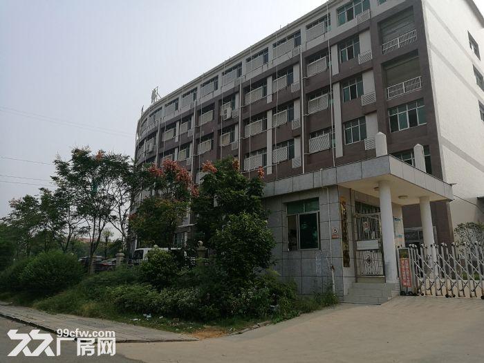 宁乡高新区有多层框架厂房出售或出租-图(2)