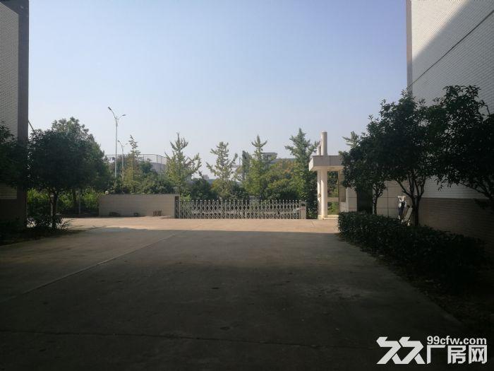 宁乡高新区有多层框架厂房出售或出租-图(4)