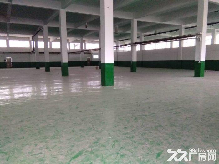 硕放独栋单层标准厂房2400平米出租-图(1)