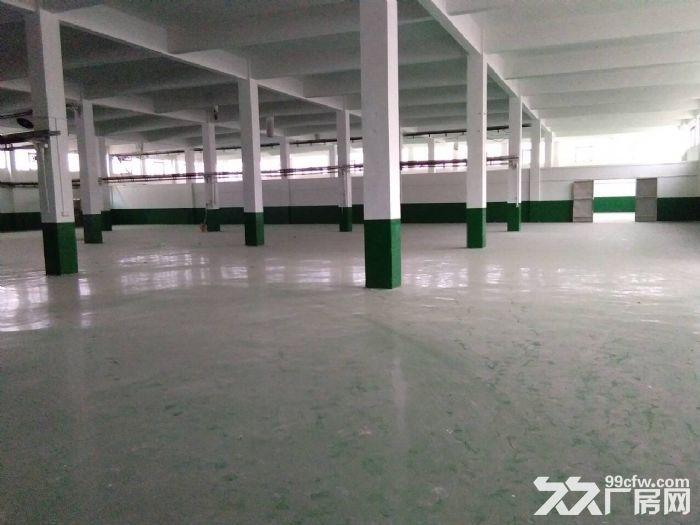 硕放独栋单层标准厂房2400平米出租-图(2)