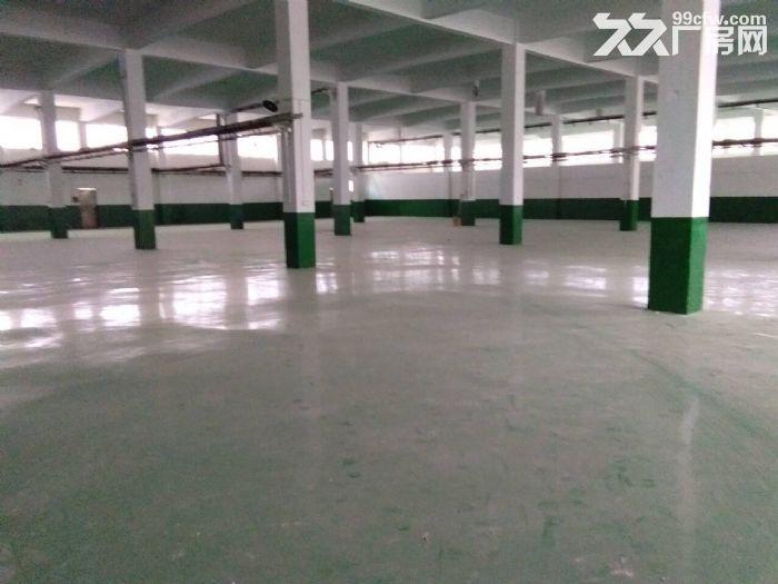 硕放独栋单层标准厂房2400平米出租-图(3)