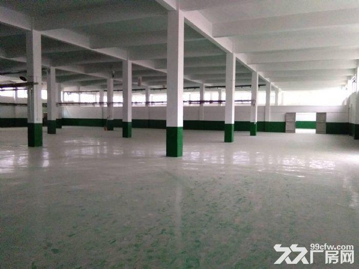 硕放独栋单层标准厂房2400平米出租-图(4)