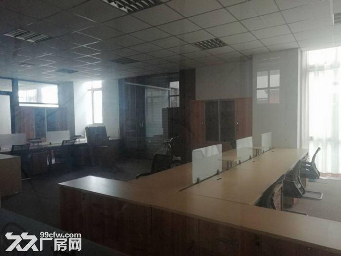 一楼商务办公、生产厂房,带装修拎包就用方便快捷无需多虑-图(4)
