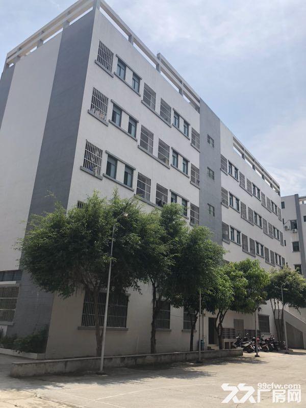 惠州市惠阳区沙田镇建富工业园标准厂房招租-图(1)