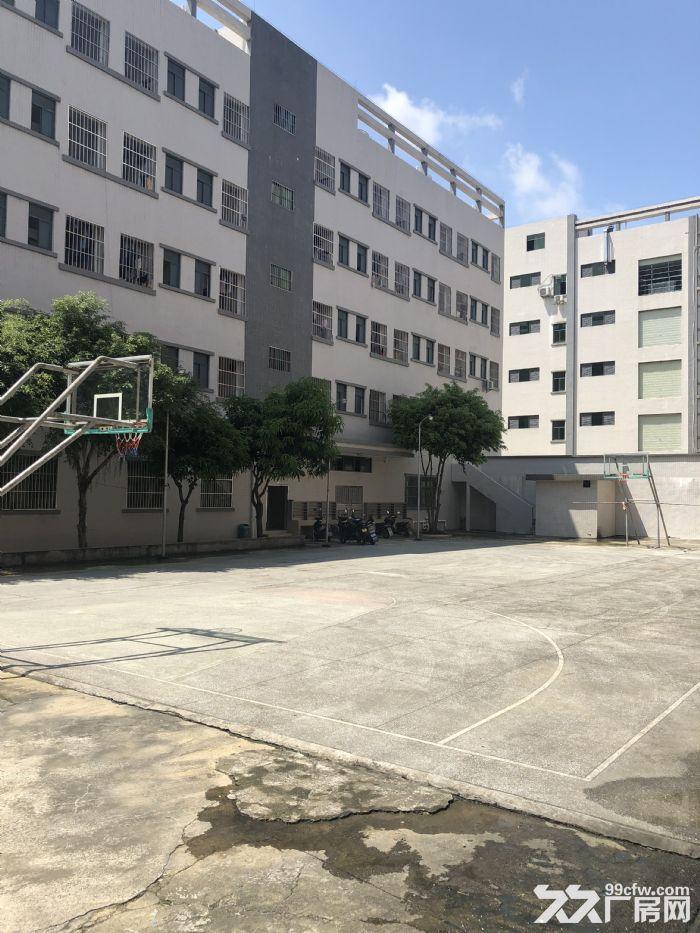 惠州市惠阳区沙田镇建富工业园标准厂房招租-图(2)