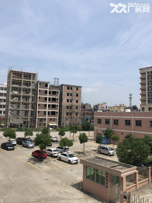 惠州市惠阳区沙田镇建富工业园标准厂房招租-图(3)