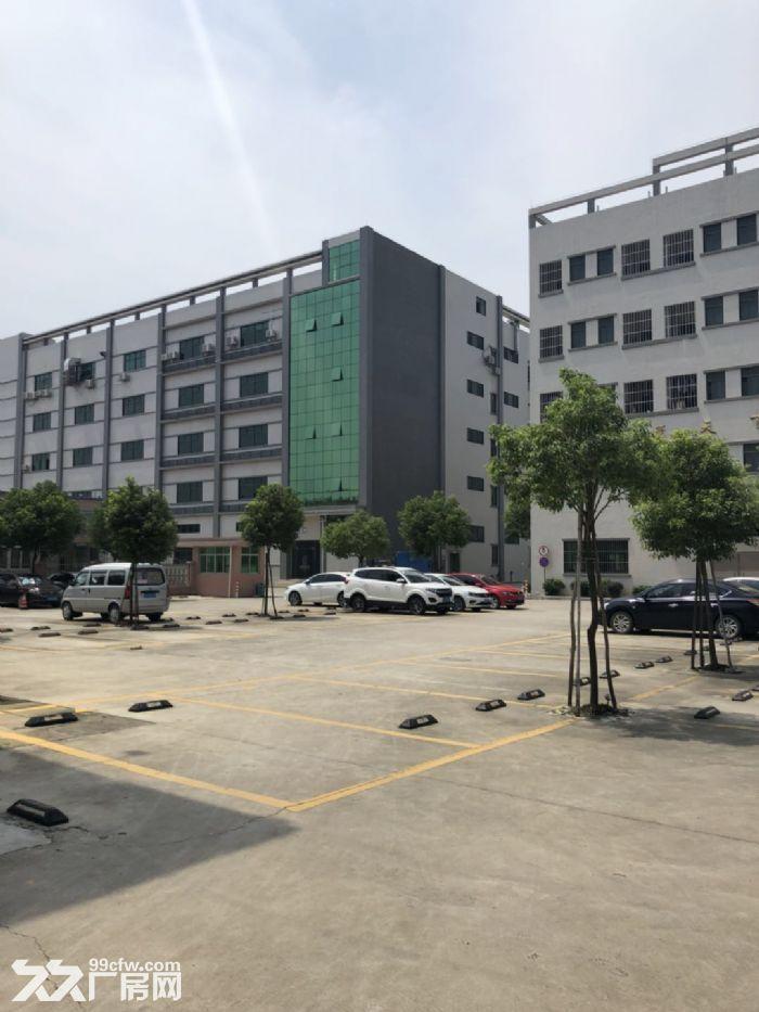惠州市惠阳区沙田镇建富工业园标准厂房招租-图(7)