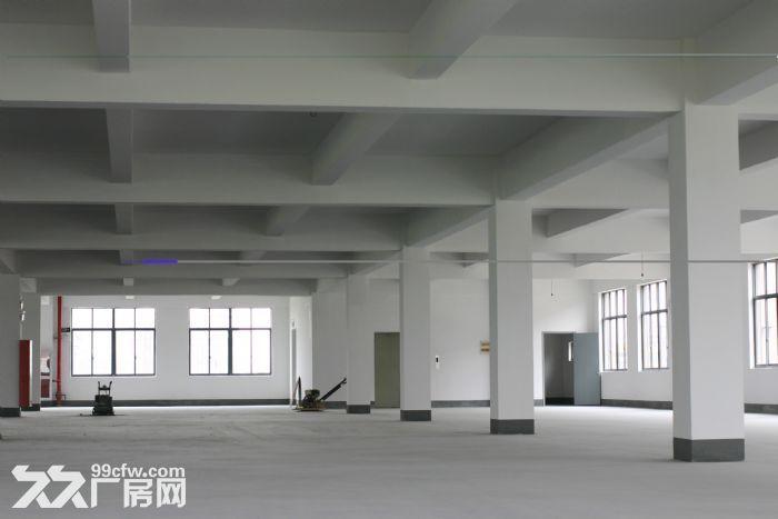 上海市松江区104板块厂房出租大虹桥板块,G60科技走廊,G15莘砖公路出口-图(2)