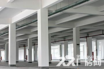上海市松江区104板块厂房出租大虹桥板块,G60科技走廊,G15莘砖公路出口-图(5)