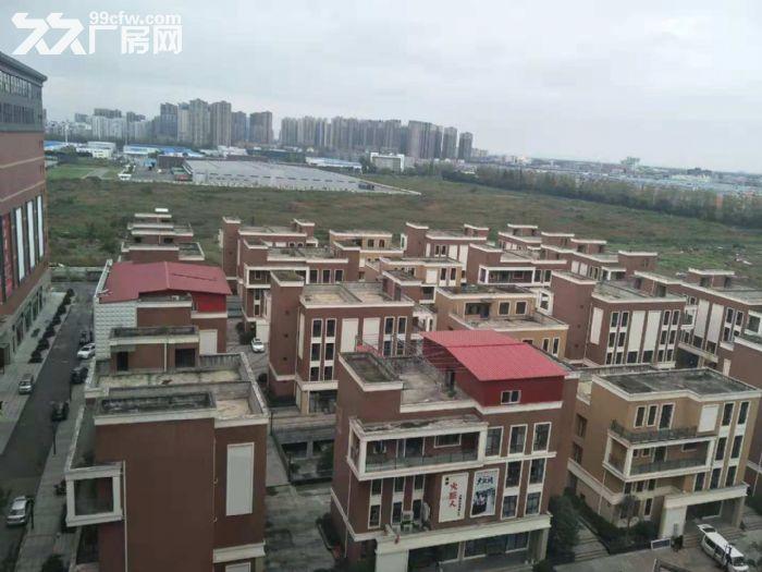 成都市高新西区双柏路68号(恒大帝景旁)30000平工业土地出租长期短期均可-图(2)