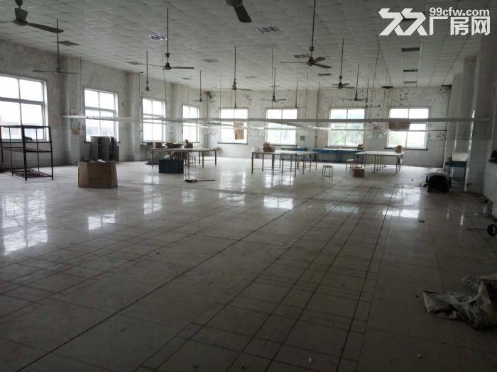 兴塔镇标准厂房仓库出租0.45元/平方-图(1)