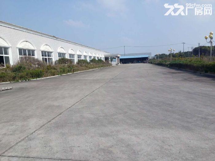 兴塔镇标准厂房仓库出租0.45元/平方-图(2)