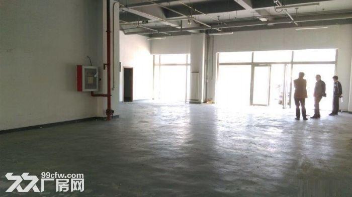 一层临街200平2.6全含可做展厅-图(1)