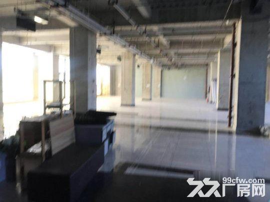 亦庄核心区一层厂房5.5米高1800平米·用不了可以分割-图(1)