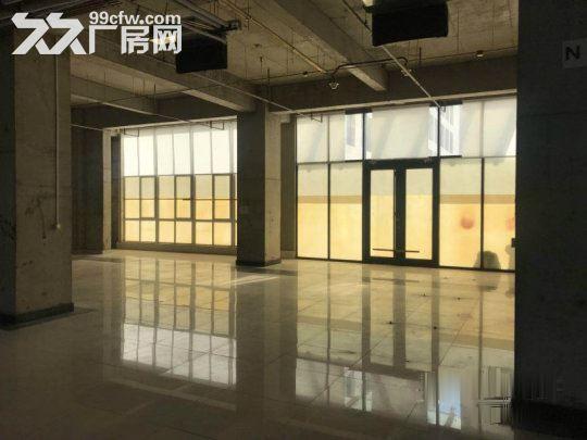 亦庄核心区一层厂房5.5米高1800平米·用不了可以分割-图(2)