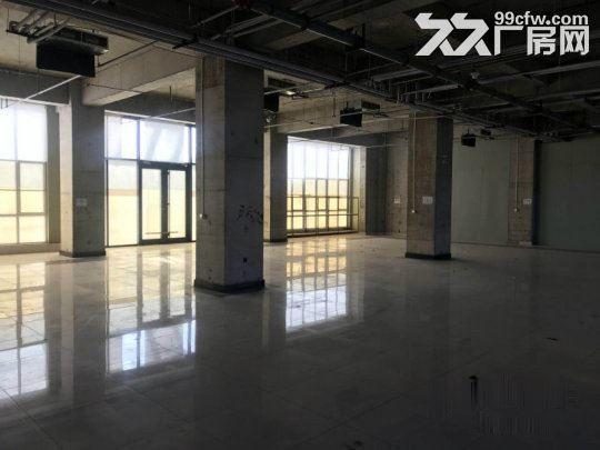 亦庄核心区一层厂房5.5米高1800平米·用不了可以分割-图(4)