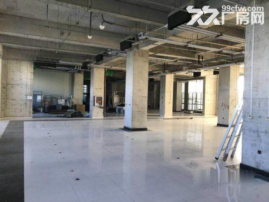 亦庄核心区一层厂房5.5米高1800平米·用不了可以分割-图(5)