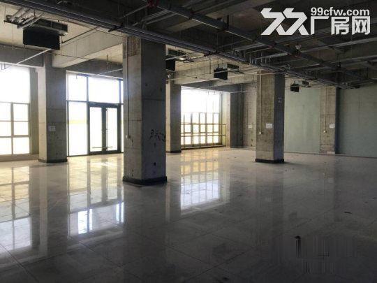 亦庄核心区一层厂房5.5米高1800平米·用不了可以分割-图(6)