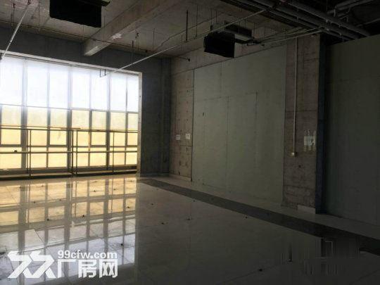 亦庄核心区一层厂房5.5米高1800平米·用不了可以分割-图(7)
