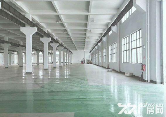 独门独院厂房仓库出租,环氧地坪已做好-图(4)