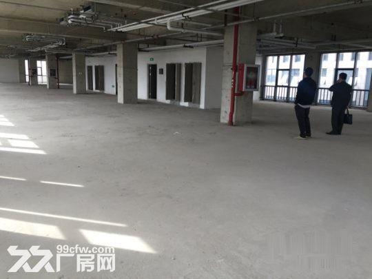 开发商出售独栋研发办公厂房框架结构一层高8米-图(6)