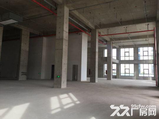 开发商出售独栋研发办公厂房框架结构一层高8米-图(7)