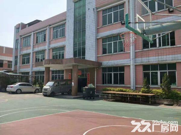 塘厦138工业区标准2楼1450电子车间干净整洁-图(3)