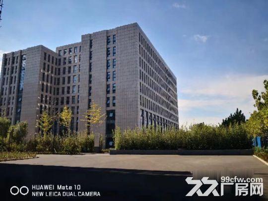 办公、研发、厂房出售,面积300到6000平-图(8)