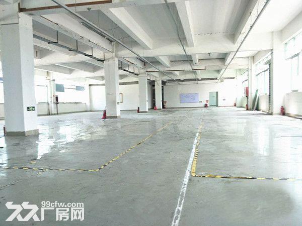 塘厦诸佛岭标准厂房一楼1500平方空精装修可分租-图(2)