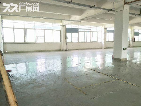 塘厦诸佛岭标准厂房一楼1500平方空精装修可分租-图(3)