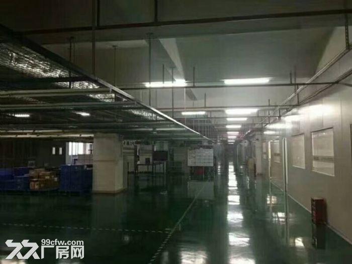 凤岗新空出无尘车间厂房楼上3600平,配套设施齐全-图(1)