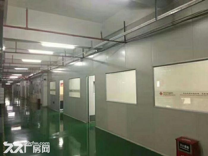凤岗新空出无尘车间厂房楼上3600平,配套设施齐全-图(2)