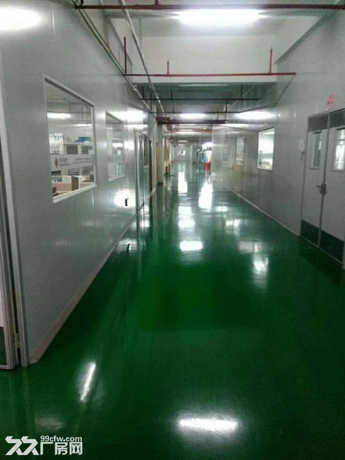 凤岗新空出无尘车间厂房楼上3600平,配套设施齐全-图(3)