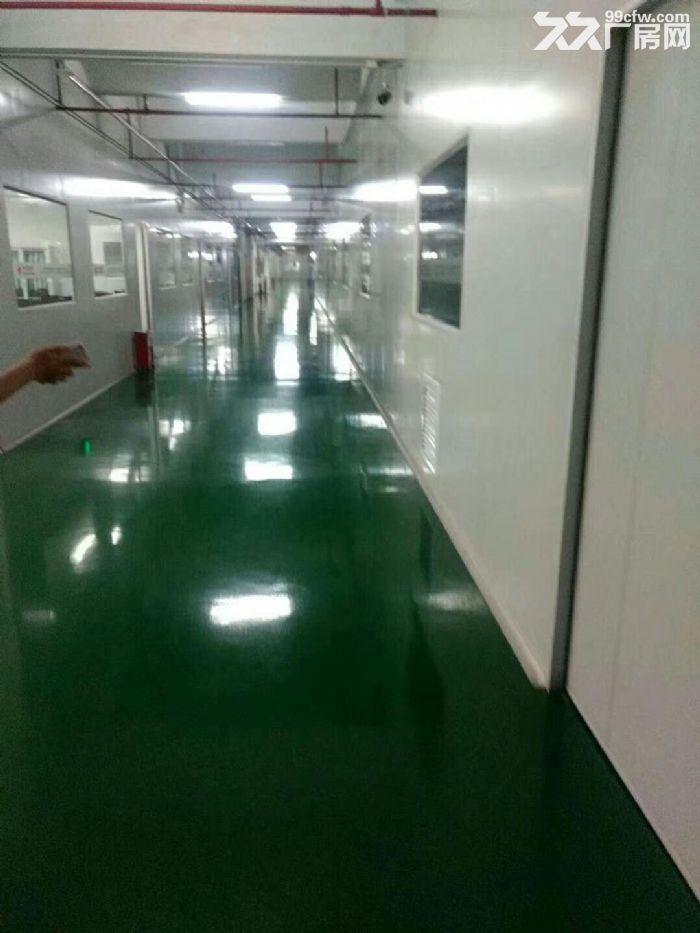 凤岗新空出无尘车间厂房楼上3600平,配套设施齐全-图(4)