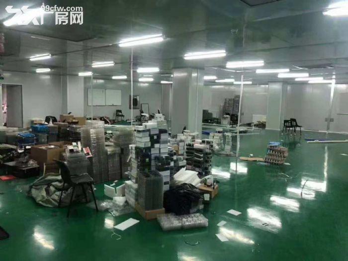 凤岗五联新出无尘车间、洁净车间出租1200平方-图(3)