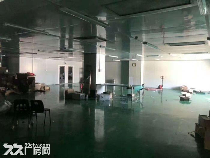 凤岗五联新出无尘车间、洁净车间出租1200平方-图(2)