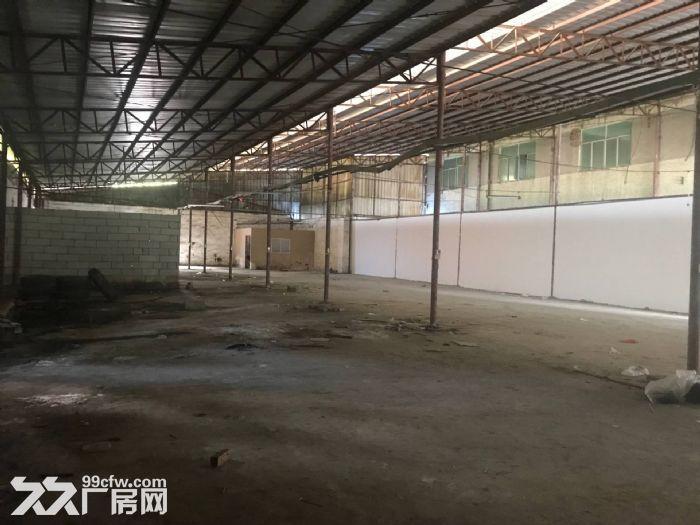 凤岗黄洞塑胶抽粒破碎展柜家私便宜钢结构厂房出租-图(1)