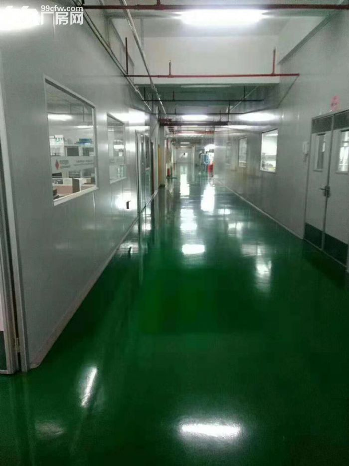 凤岗官井头手机电子厂房出租精装办公室水电齐全-图(2)