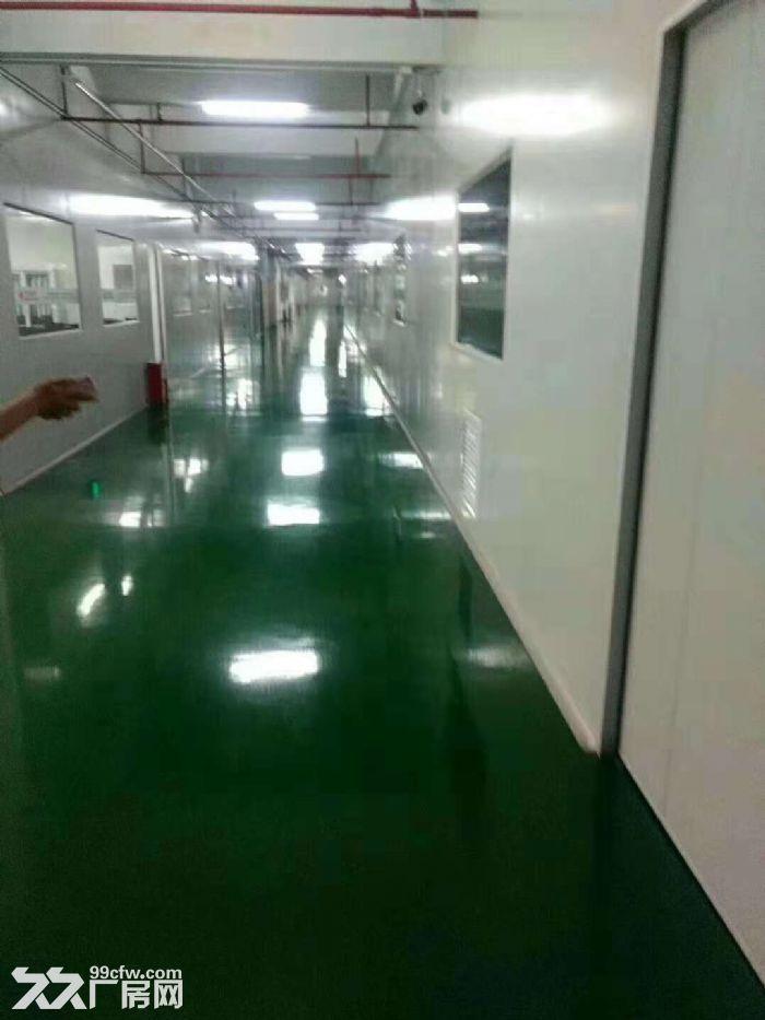 凤岗官井头手机电子厂房出租精装办公室水电齐全-图(1)