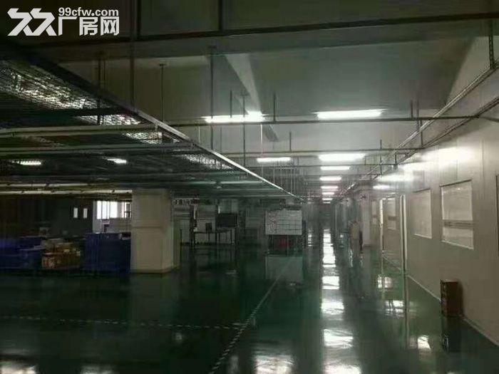 凤岗官井头手机电子厂房出租精装办公室水电齐全-图(4)