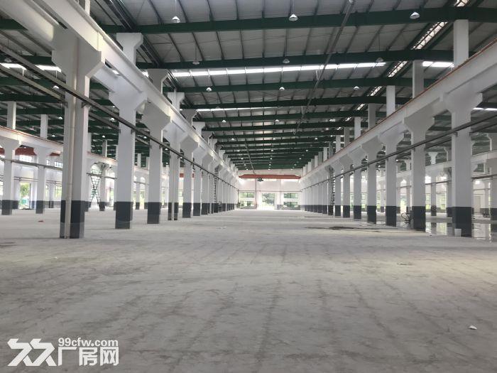 出租高浪路高架附近2800平新建标准机械厂房-图(1)