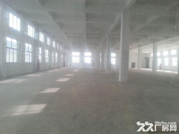 出租新区新华路7400平独栋厂房气质-图(2)