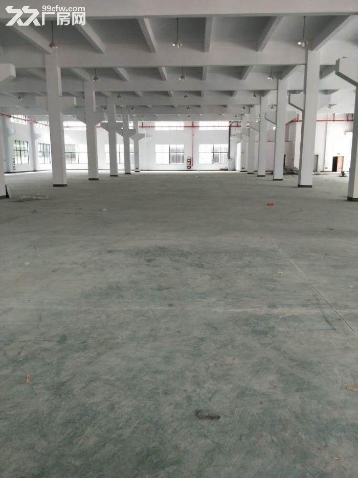 一手房东诚租,北桥独栋单层3000㎡机械厂房,招租-图(3)