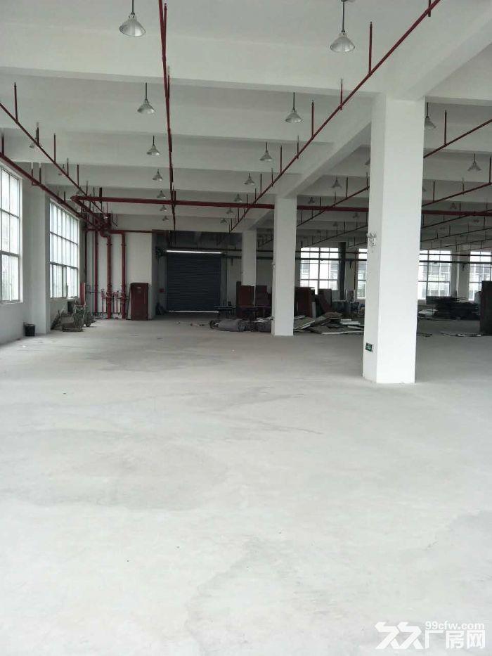 一手房东渭塘新出底楼厂房1100平方可分割-图(1)